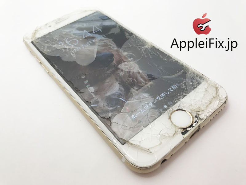 iPhoneバキバキに割れた画面修理5.JPG