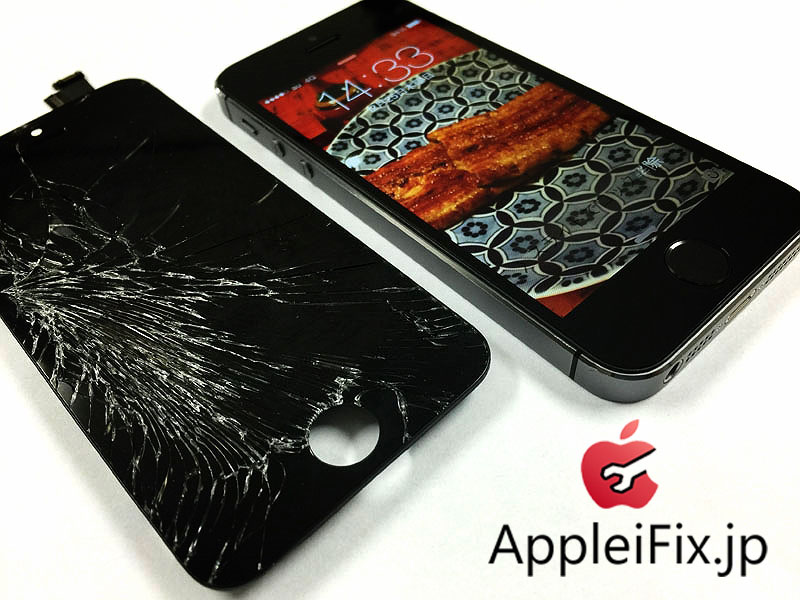 appleifix_4.jpg